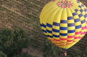 Ballon Over the Vineyard